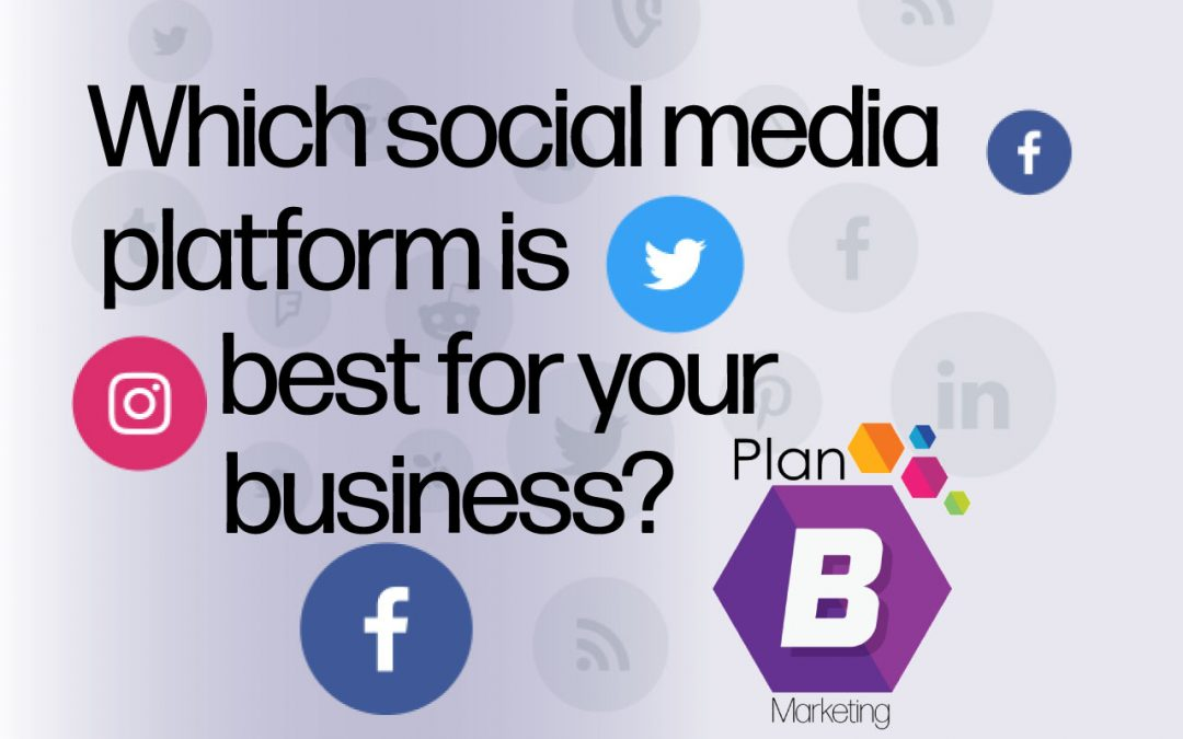 Social Media: Which platform works best for your business?